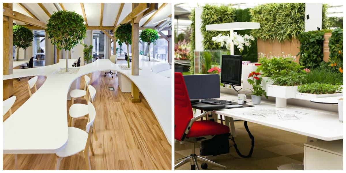 Oficina verde- tendencias e ideas muy de moda para este ano